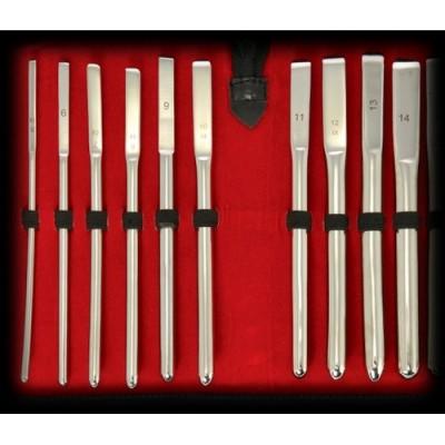 Set di 10 sonde uretrali in acciaio Rosebud diametro da 5 mm a 14 mm